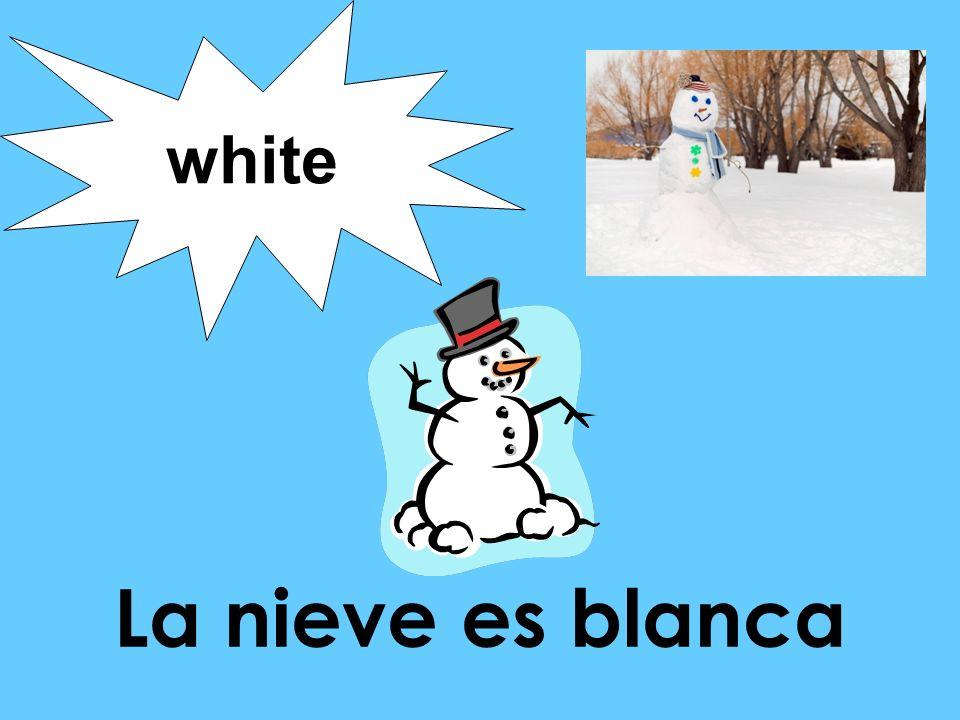 La nieve es blanca white
