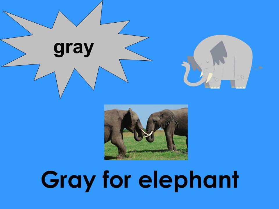 Gray for elephant gray
