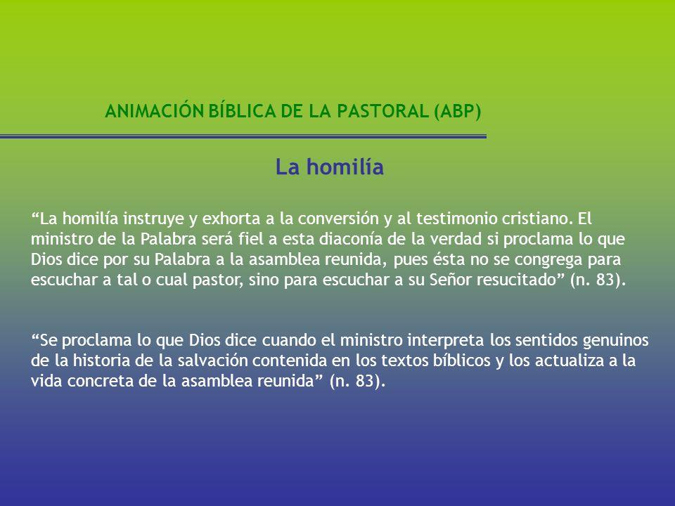 ANIMACIÓN BÍBLICA DE LA PASTORAL (ABP) La homilía La homilía instruye y exhorta a la conversión y al testimonio cristiano. El ministro de la Palabra s
