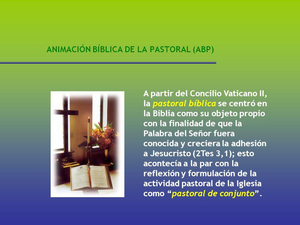 ANIMACIÓN BÍBLICA DE LA PASTORAL (ABP) A partir del Concilio Vaticano II, la pastoral bíblica se centró en la Biblia como su objeto propio con la fina