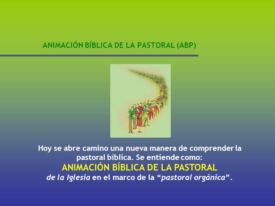 ANIMACIÓN BÍBLICA DE LA PASTORAL (ABP) Hoy se abre camino una nueva manera de comprender la pastoral bíblica. Se entiende como: ANIMACIÓN BÍBLICA DE L