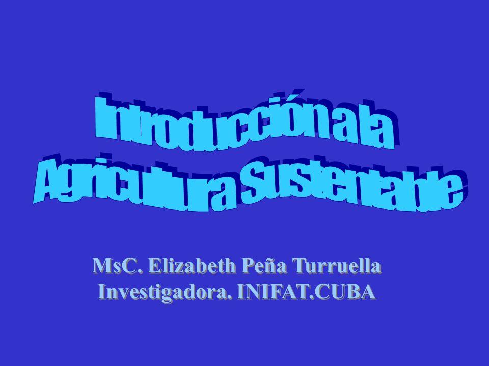 MsC. Elizabeth Peña Turruella Investigadora. INIFAT.CUBA MsC. Elizabeth Peña Turruella Investigadora. INIFAT.CUBA