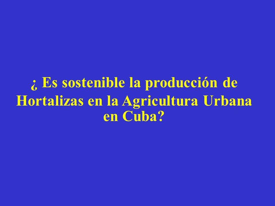 ¿ Es sostenible la producción de Hortalizas en la Agricultura Urbana en Cuba?