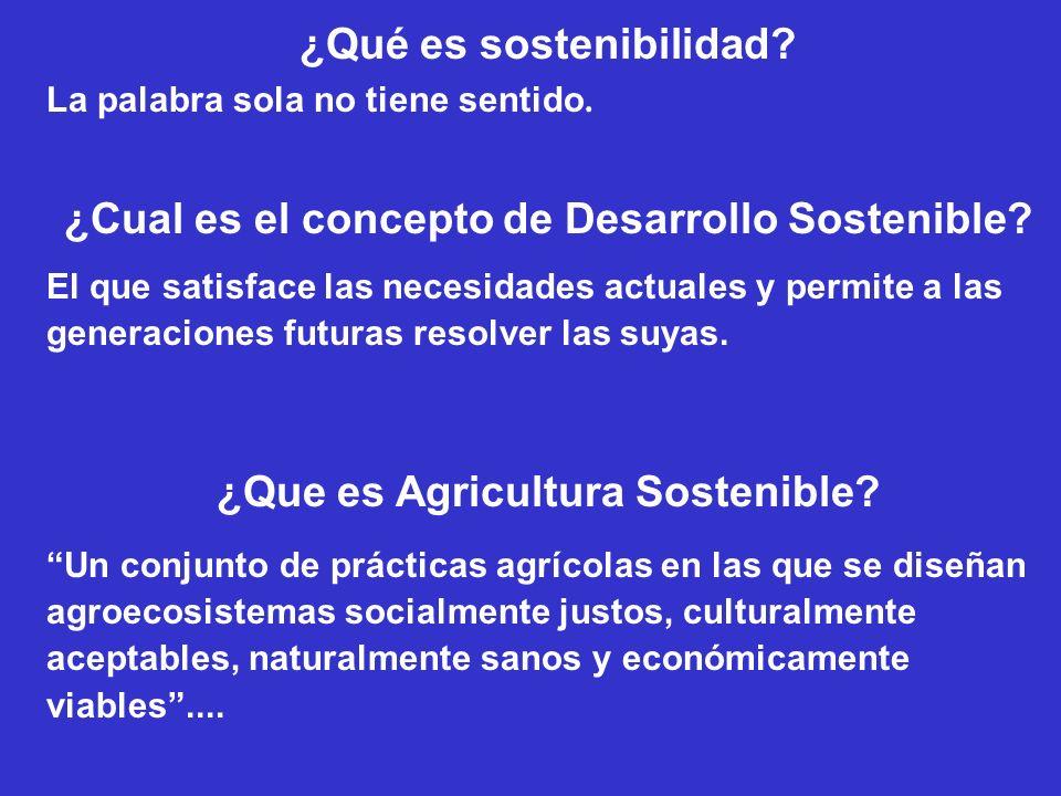 ¿Qué es sostenibilidad? La palabra sola no tiene sentido. ¿Cual es el concepto de Desarrollo Sostenible? El que satisface las necesidades actuales y p
