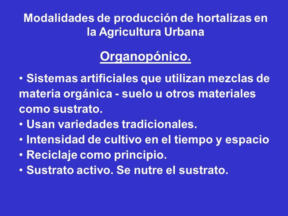 Modalidades de producción de hortalizas en la Agricultura Urbana Organopónico. Sistemas artificiales que utilizan mezclas de materia orgánica - suelo