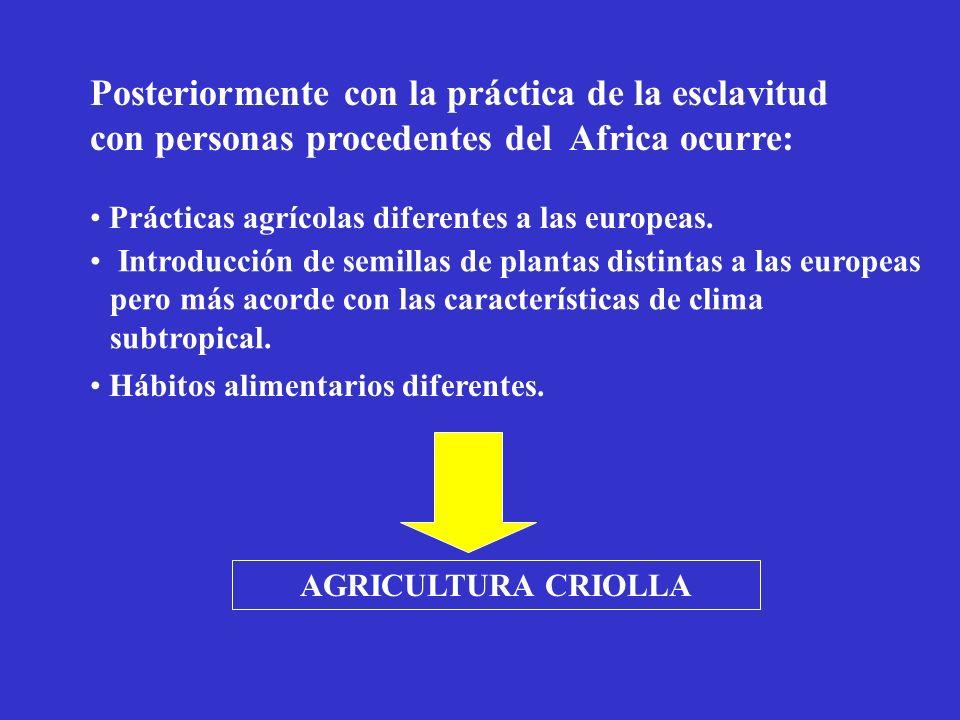 Posteriormente con la práctica de la esclavitud con personas procedentes del Africa ocurre: Prácticas agrícolas diferentes a las europeas. Introducció