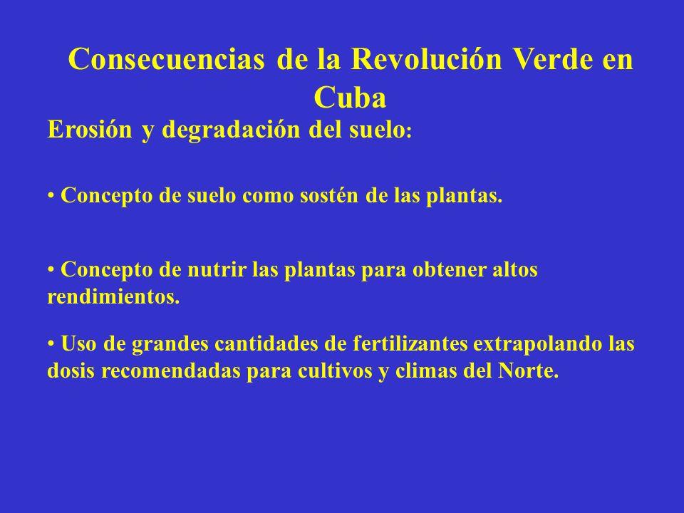 Consecuencias de la Revolución Verde en Cuba Disminución de biodiversidad : Implantación del monocultivo en grandes áreas compactas.