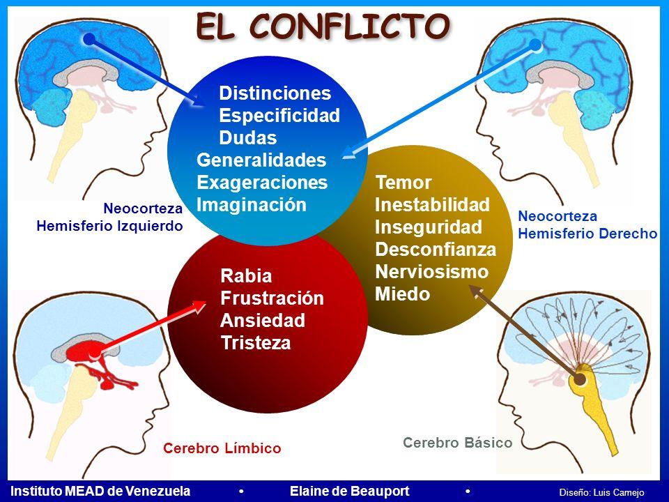 Instituto MEAD de Venezuela Elaine de Beauport Diseño: Luis Camejo Neocorteza Hemisferio Izquierdo Neocorteza Hemisferio Izquierdo Neocorteza Hemisfer