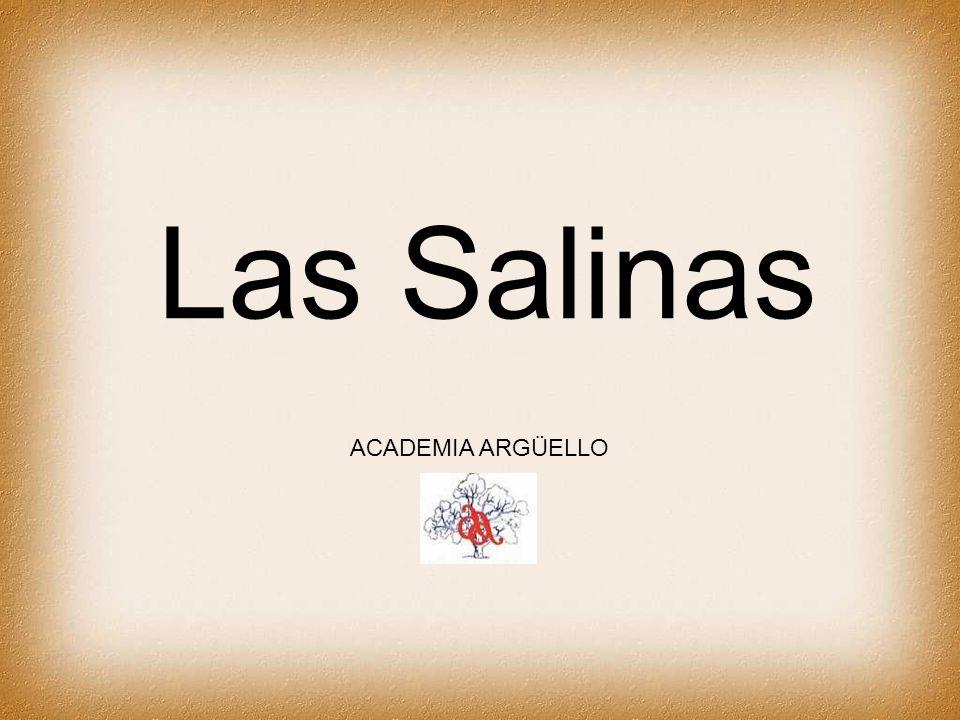Las Salinas están ubicadas al noroeste de la provincia de Córdoba.