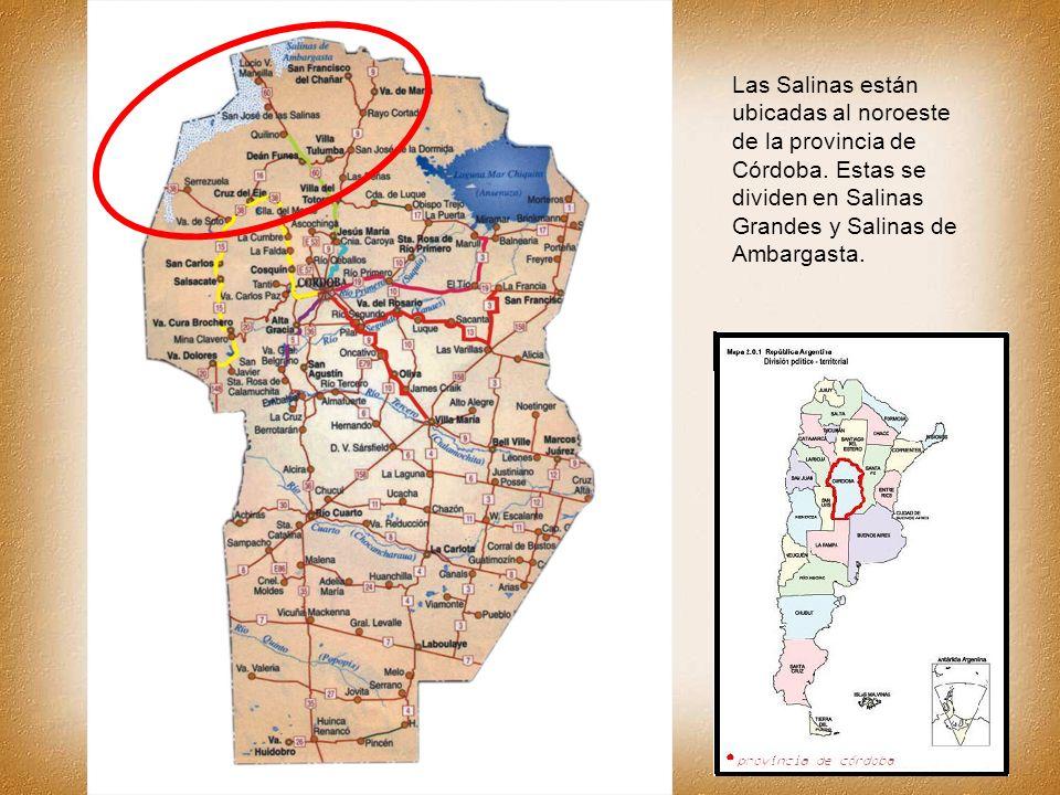 Las Salinas están ubicadas al noroeste de la provincia de Córdoba. Estas se dividen en Salinas Grandes y Salinas de Ambargasta.