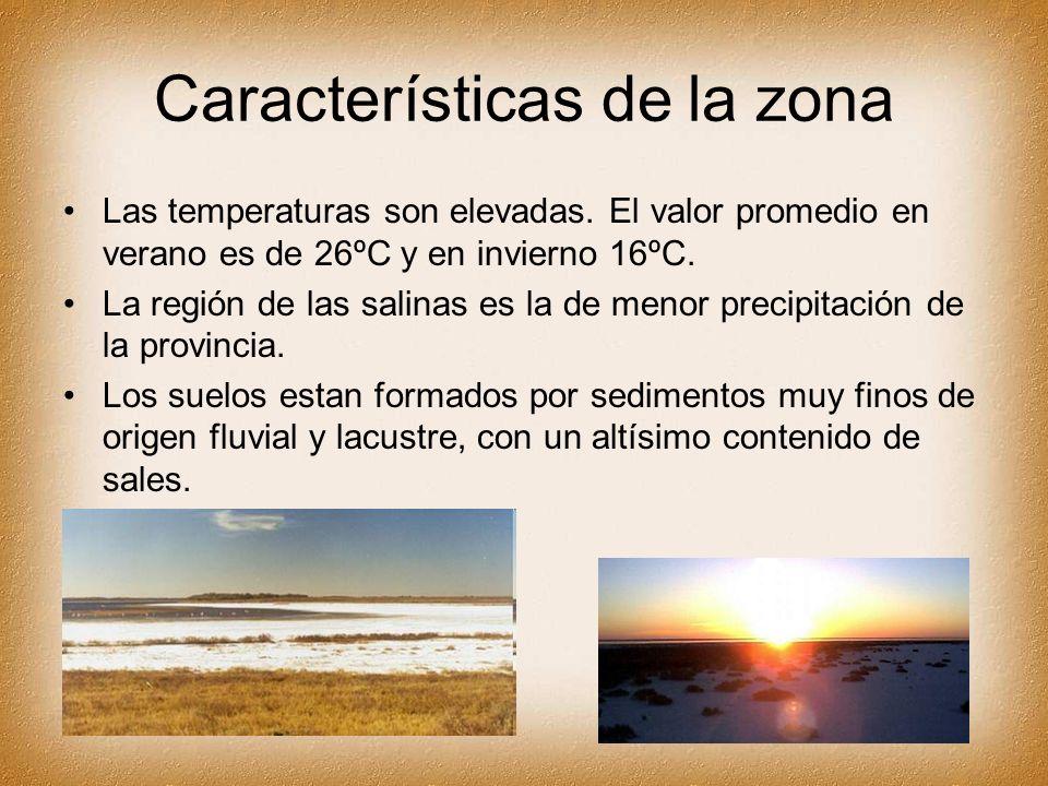 Características de la zona Las temperaturas son elevadas. El valor promedio en verano es de 26ºC y en invierno 16ºC. La región de las salinas es la de