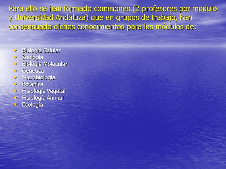 Para ello se han formado comisiones (2 profesores por modulo y Universidad Andaluza) que en grupos de trabajo, han consensuado dichos conocimientos pa