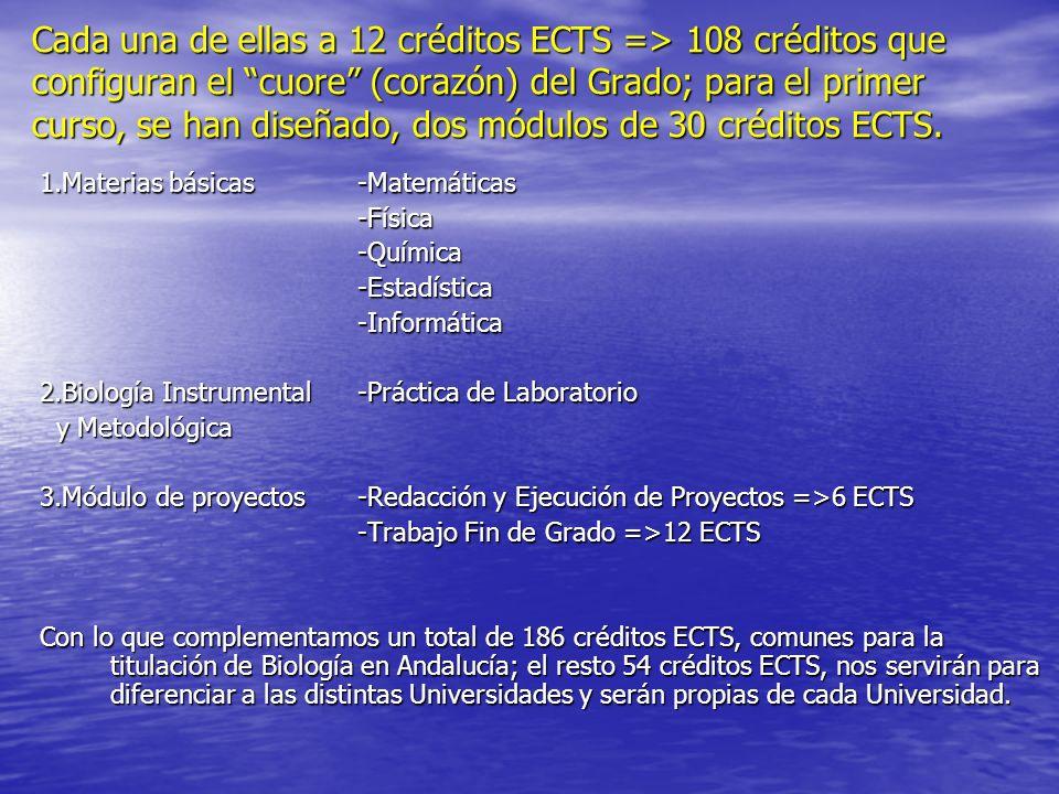 Cada una de ellas a 12 créditos ECTS => 108 créditos que configuran el cuore (corazón) del Grado; para el primer curso, se han diseñado, dos módulos d