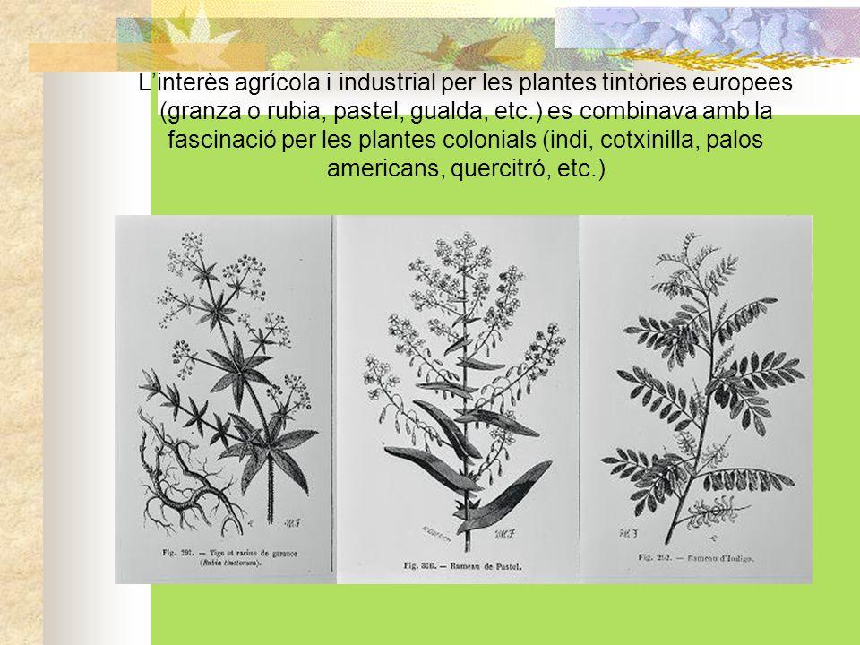 Els jardins botànics es convertiren en laboratoris agrícoles.