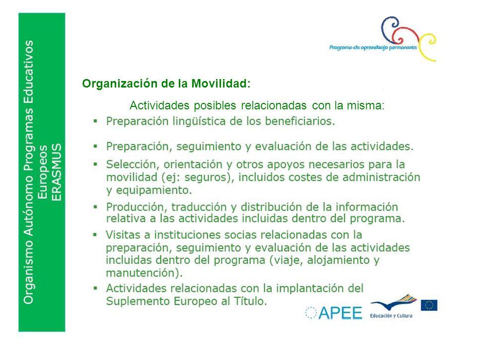 Organización de la Movilidad: Actividades posibles relacionadas con la misma: