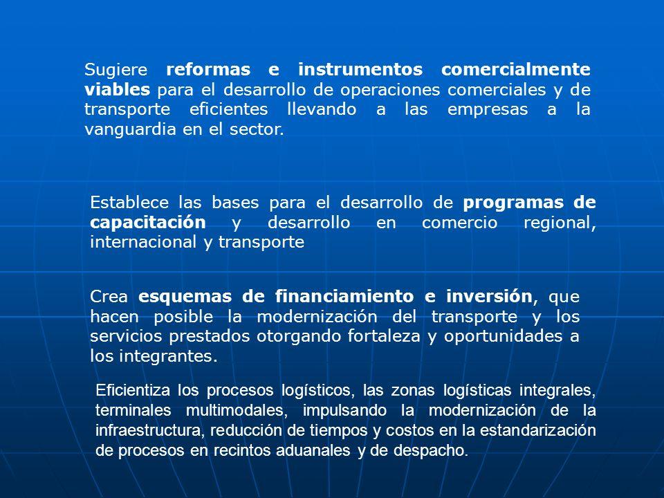 Sugiere reformas e instrumentos comercialmente viables para el desarrollo de operaciones comerciales y de transporte eficientes llevando a las empresas a la vanguardia en el sector.