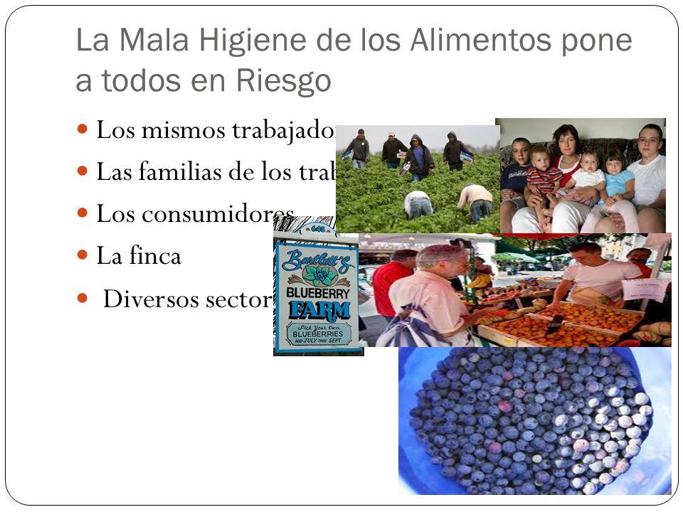 La Mala Higiene de los Alimentos pone a todos en Riesgo Los mismos trabajadores Las familias de los trabajadores Los consumidores La finca Diversos se