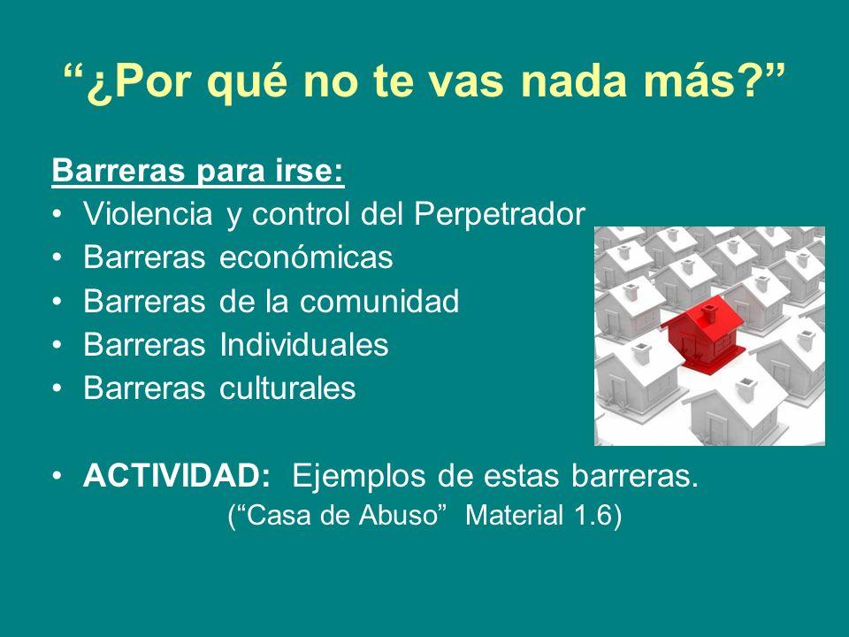 Ley de la Violencia Contra las Mujeres: La Ley de la Violencia Contra la Mujeres (VAWA por sus siglas en inglés) entró en efecto en 1994 y es el primer ejemplo de legislatura protegiendo a mujeres y niños golpeados.