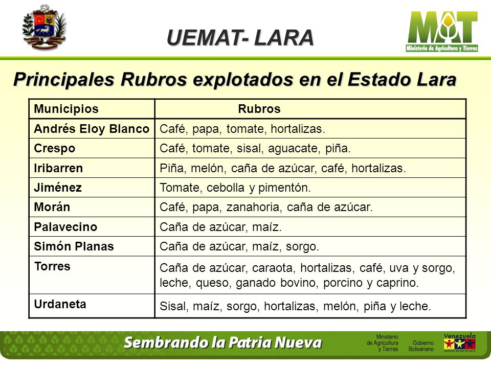Principales Rubros explotados en el Estado Lara UEMAT- LARA Municipios Rubros Andrés Eloy BlancoCafé, papa, tomate, hortalizas.