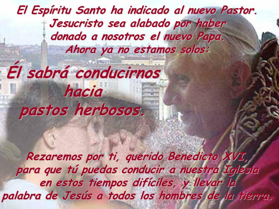 El Espíritu Santo ha indicado al nuevo Pastor. Jesucristo sea alabado por haber donado a nosotros el nuevo Papa. Ahora ya no estamos solos: Rezaremos