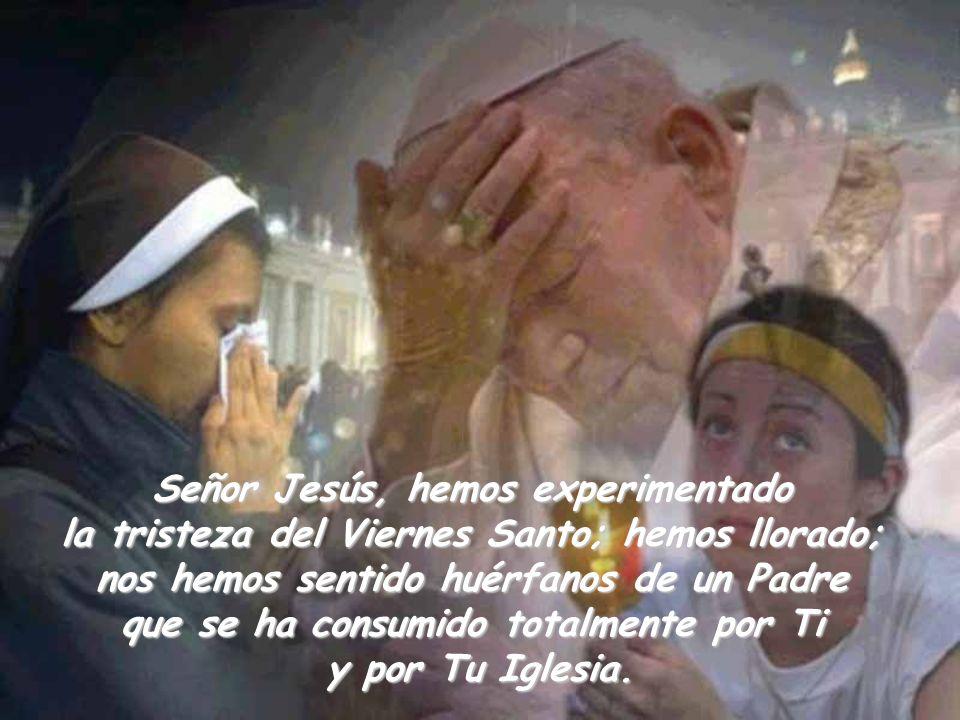 Señor Jesús, hemos experimentado la tristeza del Viernes Santo; hemos llorado; nos hemos sentido huérfanos de un Padre que se ha consumido totalmente