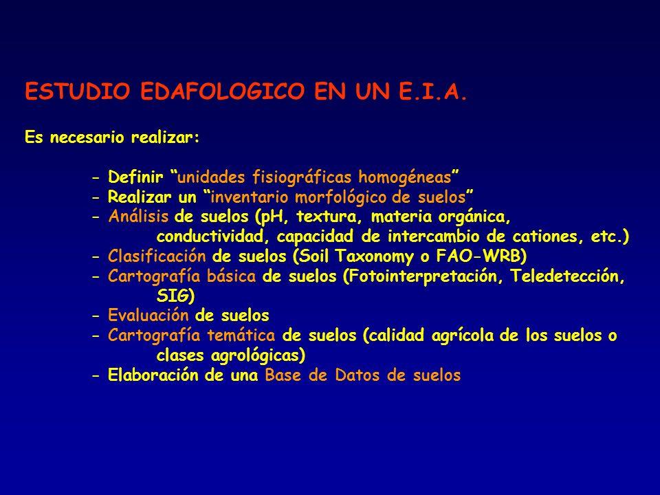 ESTUDIO EDAFOLOGICO EN UN E.I.A. Es necesario realizar: - Definir unidades fisiográficas homogéneas - Realizar un inventario morfológico de suelos - A