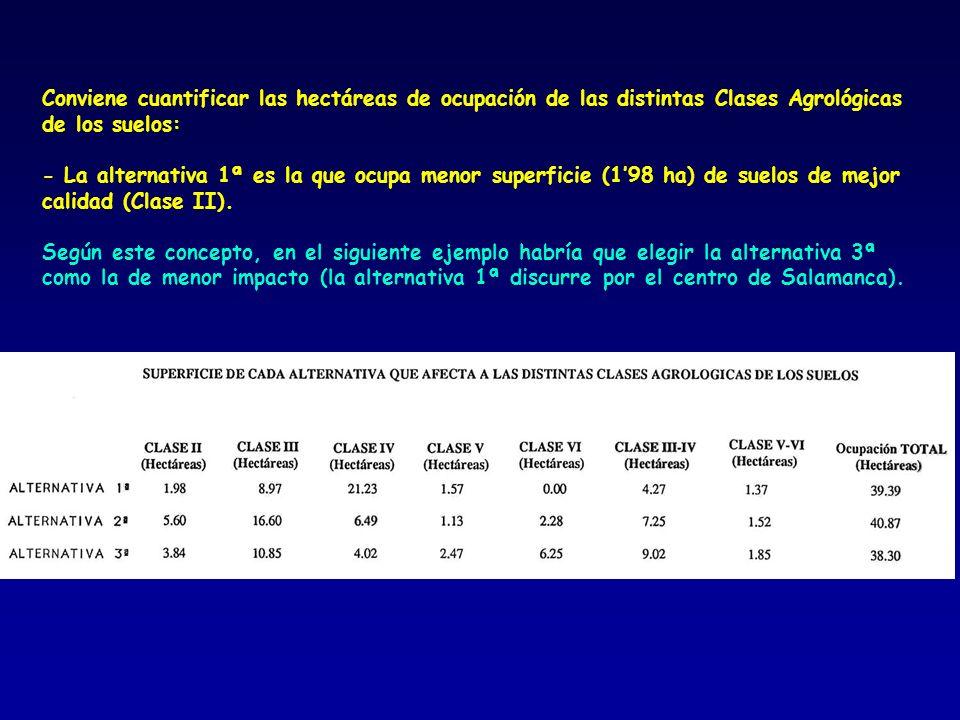 Conviene cuantificar las hectáreas de ocupación de las distintas Clases Agrológicas de los suelos: - La alternativa 1ª es la que ocupa menor superfici