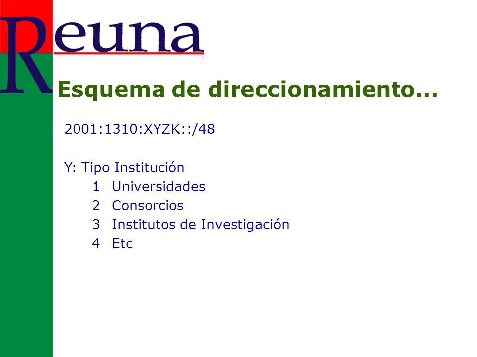 2001:1310:XYZK::/48 Y: Tipo Institución 1Universidades 2Consorcios 3Institutos de Investigación 4Etc Esquema de direccionamiento...