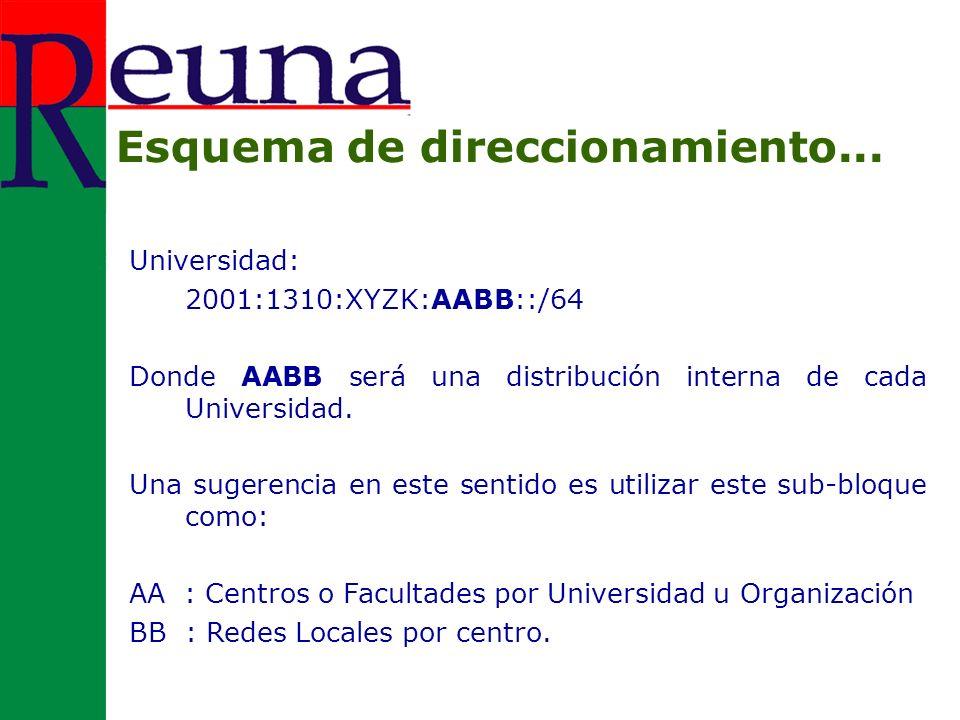 Universidad: 2001:1310:XYZK:AABB::/64 Donde AABB será una distribución interna de cada Universidad.