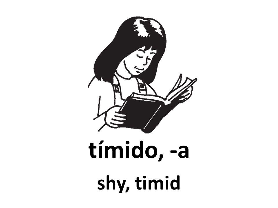tímido, -a shy, timid