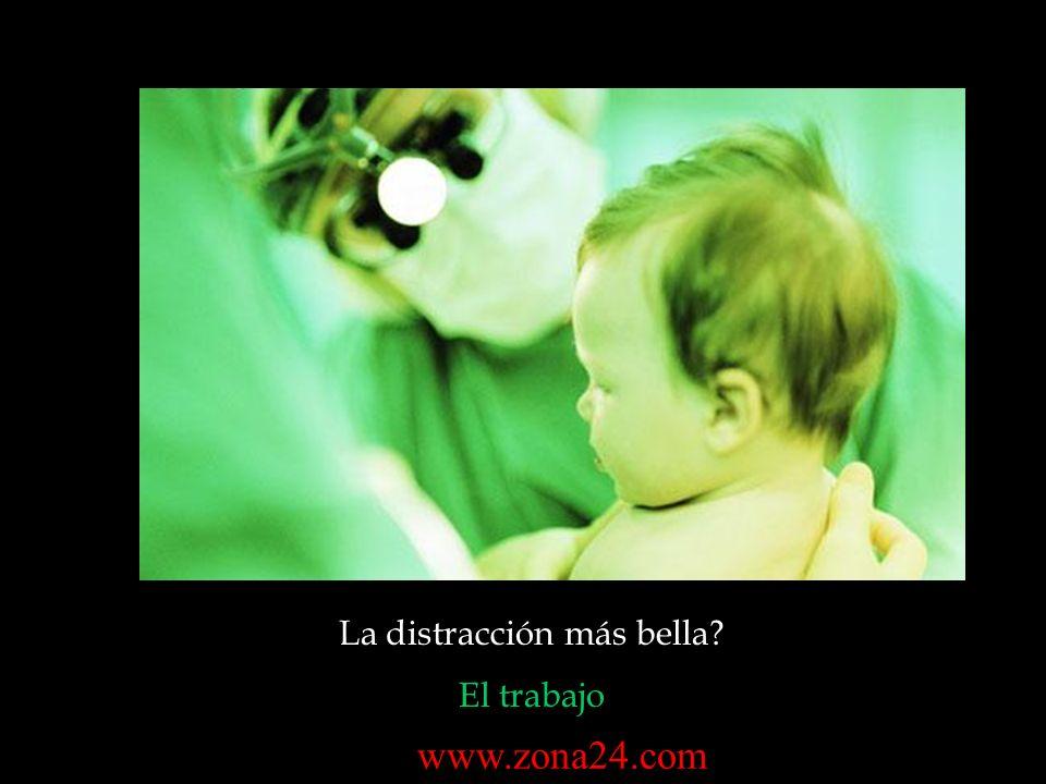 La distracción más bella? El trabajo www.zona24.com