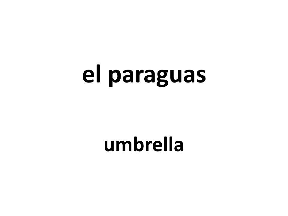 el paraguas umbrella