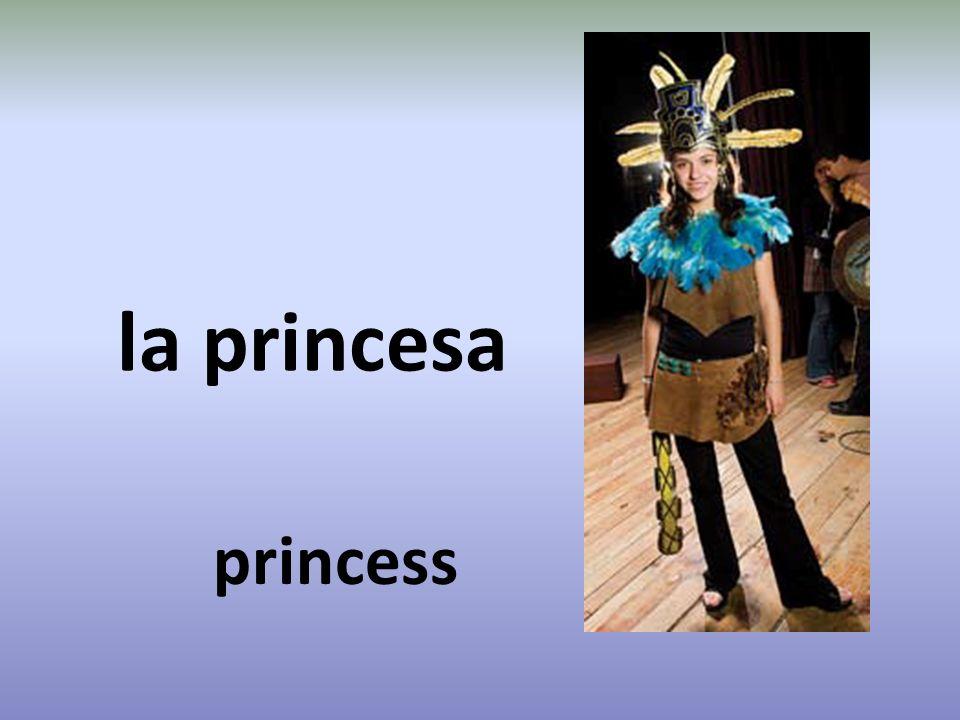 la princesa princess