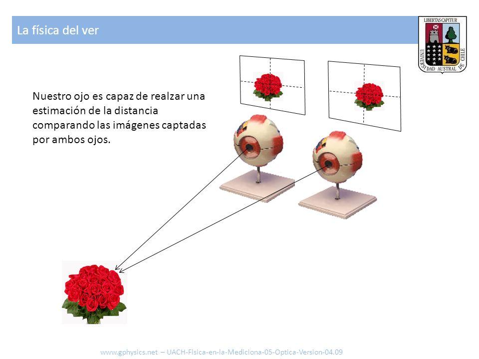 La física del ver Nuestro ojo es capaz de realzar una estimación de la distancia comparando las imágenes captadas por ambos ojos. www.gphysics.net – U