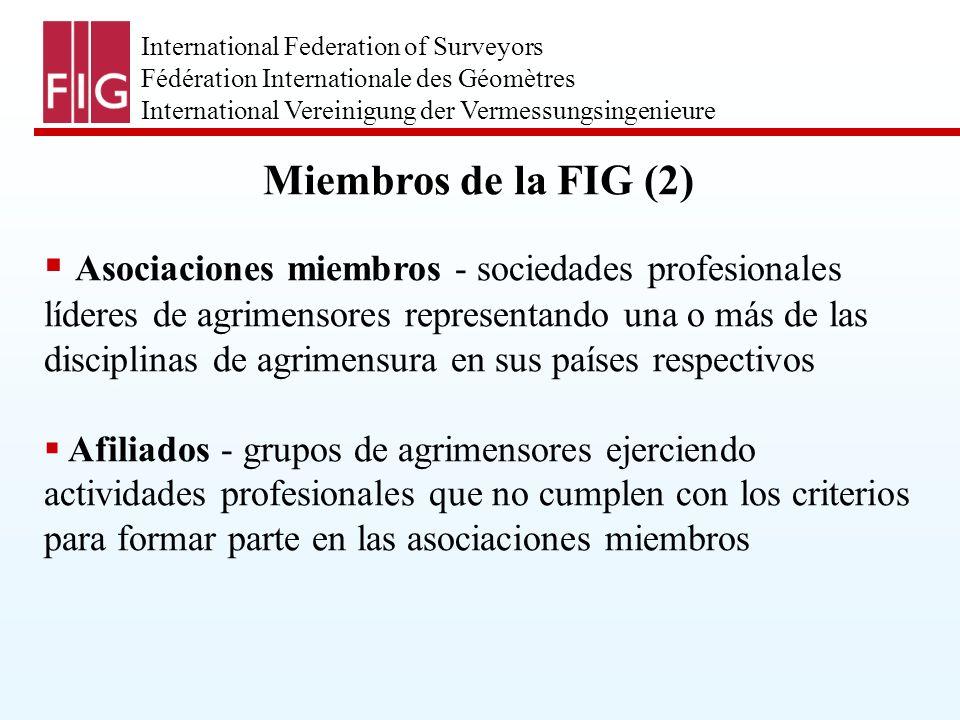 International Federation of Surveyors Fédération Internationale des Géomètres International Vereinigung der Vermessungsingenieure FIG - Consejo 2003-2006 Presidente: Prof.