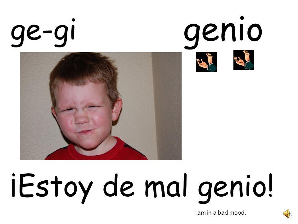 genio ¡Estoy de mal genio! I am in a bad mood. ge-gi