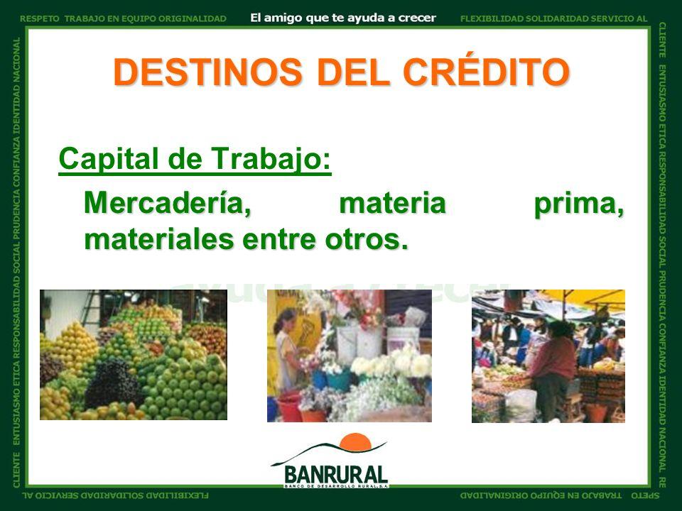 DESTINOS DEL CRÉDITO Capital de Trabajo: Mercadería, materia prima, materiales entre otros.
