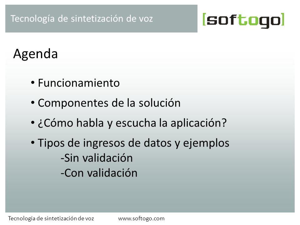 Funcionamiento Componentes de la solución ¿Cómo habla y escucha la aplicación? Tipos de ingresos de datos y ejemplos -Sin validación -Con validación A