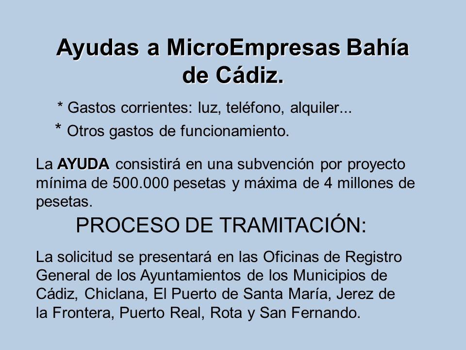 Ayudas a MicroEmpresas Bahía de Cádiz. * Gastos corrientes: luz, teléfono, alquiler... * Otros gastos de funcionamiento. AYUDA La AYUDA consistirá en