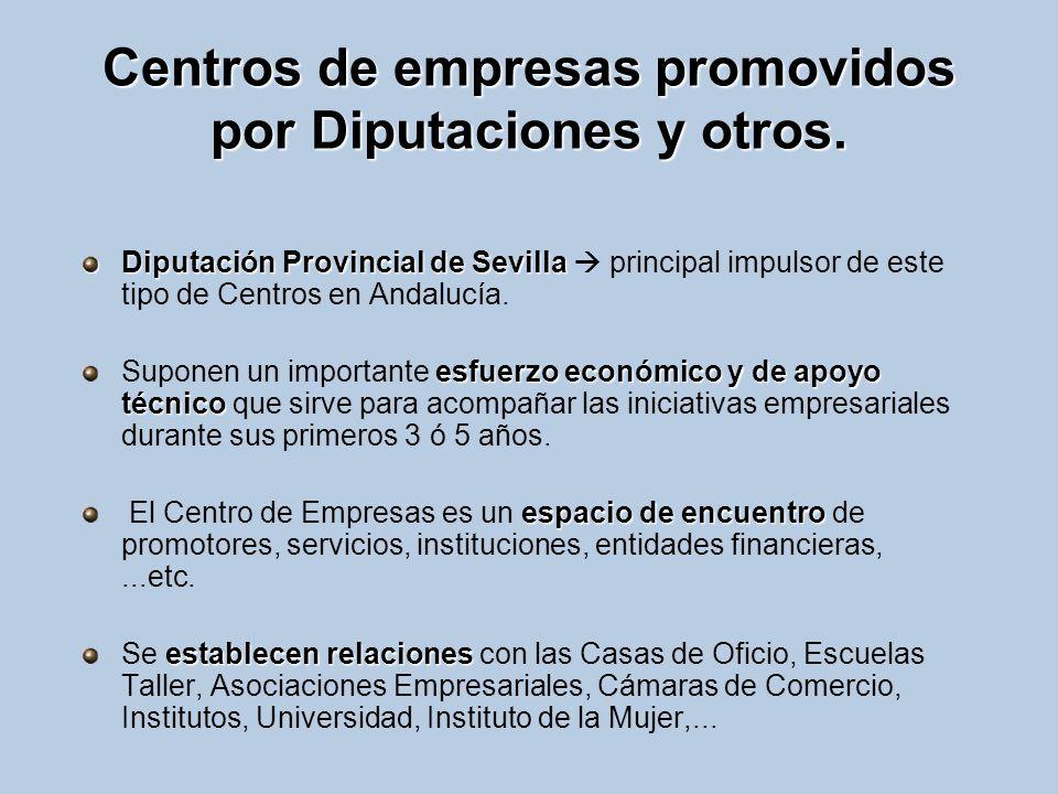 Centros de empresas promovidos por Diputaciones y otros. Diputación Provincial de Sevilla Diputación Provincial de Sevilla principal impulsor de este