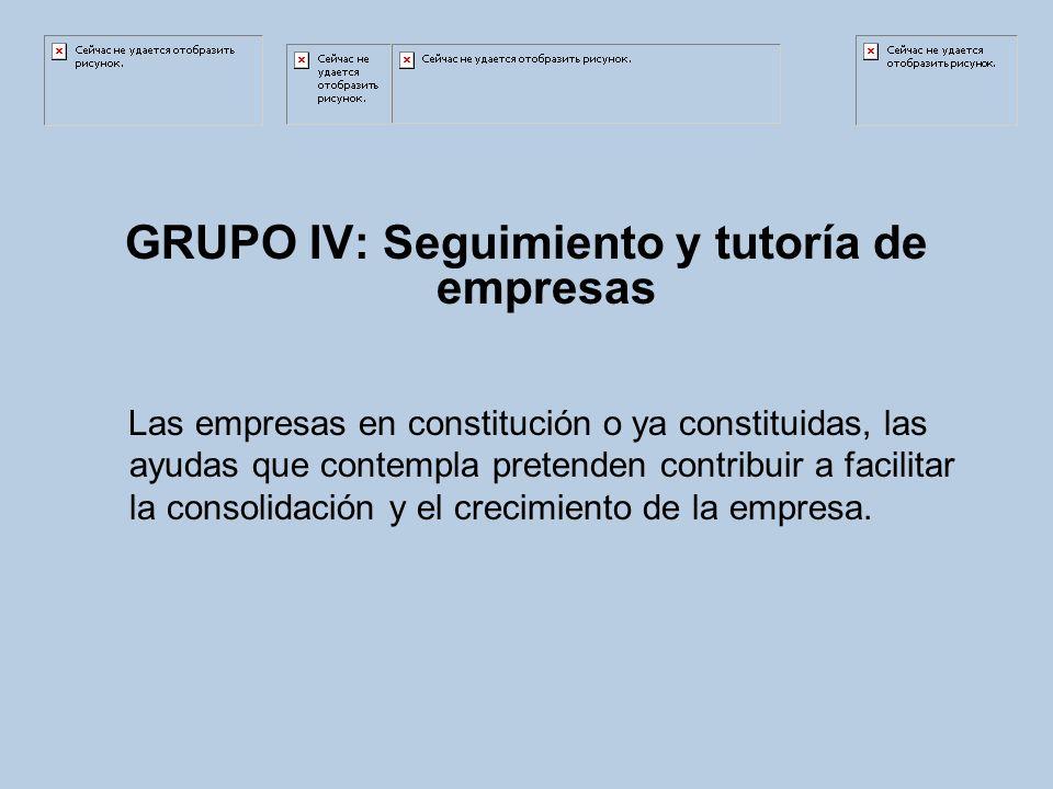 GRUPO IV: Seguimiento y tutoría de empresas Las empresas en constitución o ya constituidas, las ayudas que contempla pretenden contribuir a facilitar la consolidación y el crecimiento de la empresa.