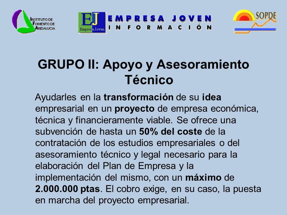 GRUPO II: Apoyo y Asesoramiento Técnico Ayudarles en la transformación de su idea empresarial en un proyecto de empresa económica, técnica y financieramente viable.