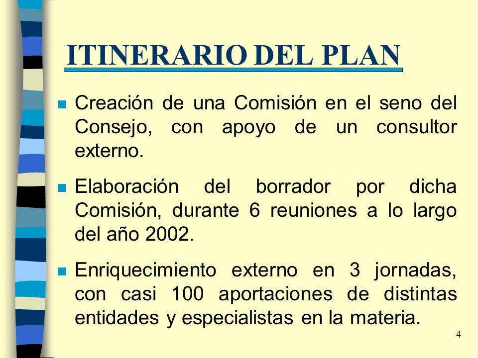 4 ITINERARIO DEL PLAN n Creación de una Comisión en el seno del Consejo, con apoyo de un consultor externo. n Elaboración del borrador por dicha Comis