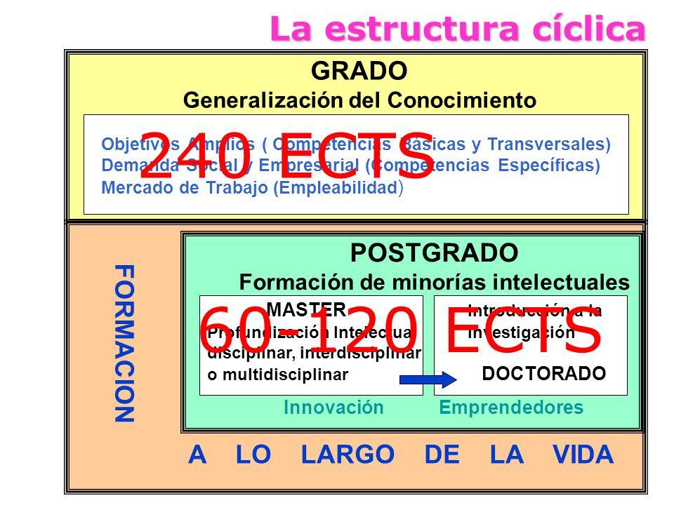 La estructura cíclica GRADO Generalización del Conocimiento Objetivos Amplios ( Competencias Básicas y Transversales) Demanda Social y Empresarial (Co