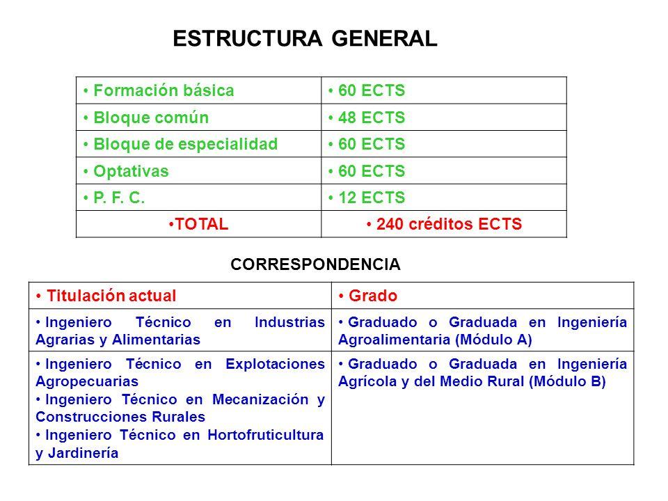 ESTRUCTURA GENERAL Formación básica 60 ECTS Bloque común 48 ECTS Bloque de especialidad 60 ECTS Optativas 60 ECTS P. F. C. 12 ECTS TOTAL 240 créditos