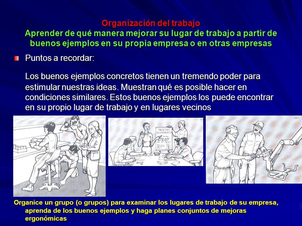 Organización del trabajo Aprender de qué manera mejorar su lugar de trabajo a partir de buenos ejemplos en su propia empresa o en otras empresas Organ