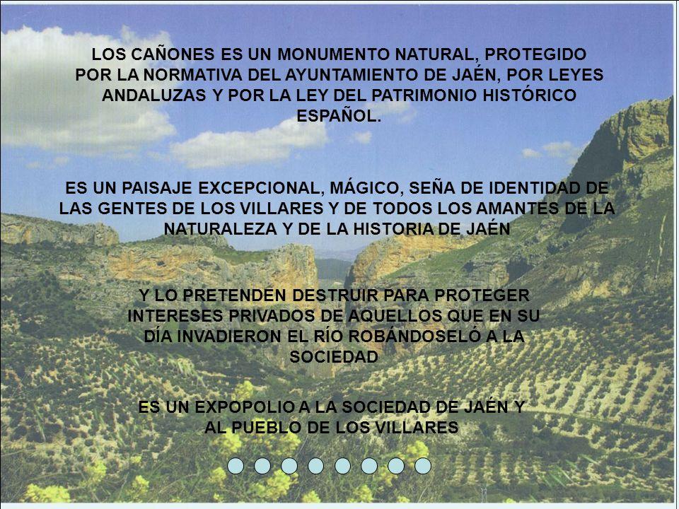 LOS CAÑONES ES UN MONUMENTO NATURAL, PROTEGIDO POR LA NORMATIVA DEL AYUNTAMIENTO DE JAÉN, POR LEYES ANDALUZAS Y POR LA LEY DEL PATRIMONIO HISTÓRICO ES