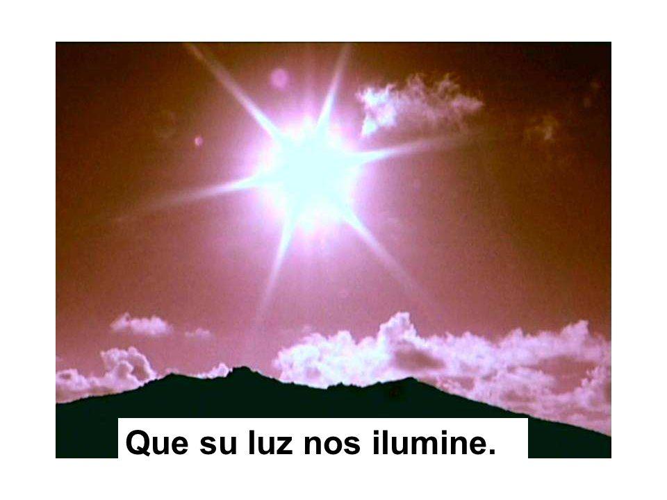 Que su luz nos ilumine.