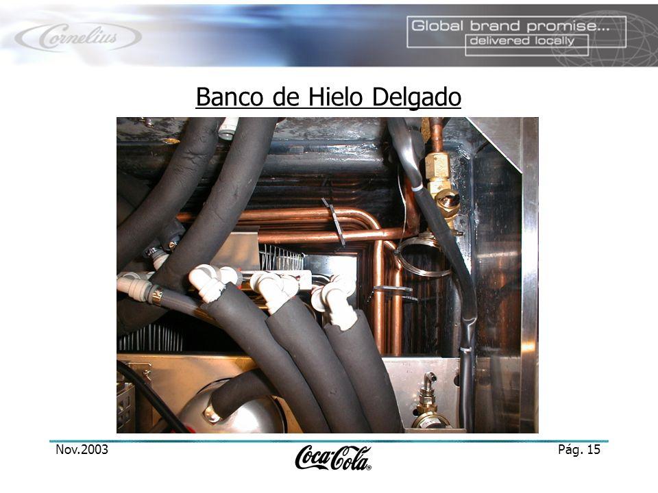 Nov.2003Pág. 15 Banco de Hielo Delgado