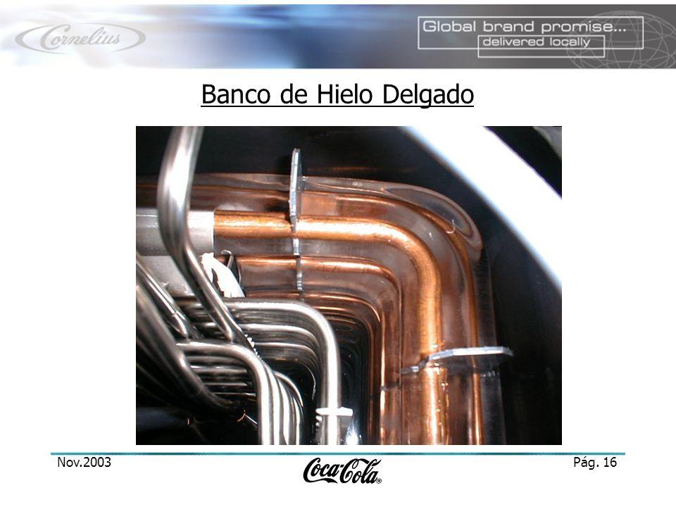 Nov.2003Pág. 16 Banco de Hielo Delgado